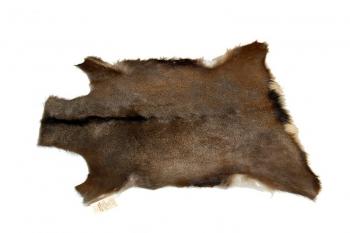 Dekorativní kožešina - jelen sika